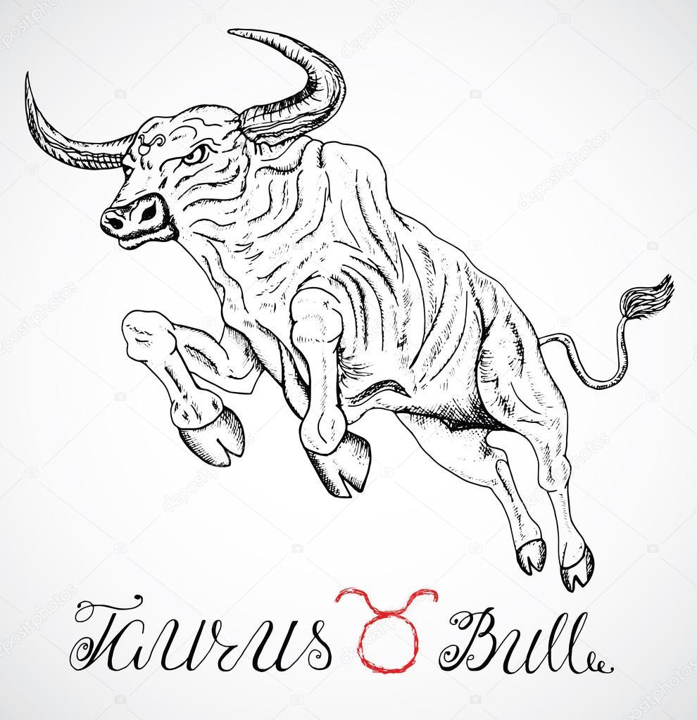 signo del zodiaco toro o tauro  u2014 archivo im u00e1genes