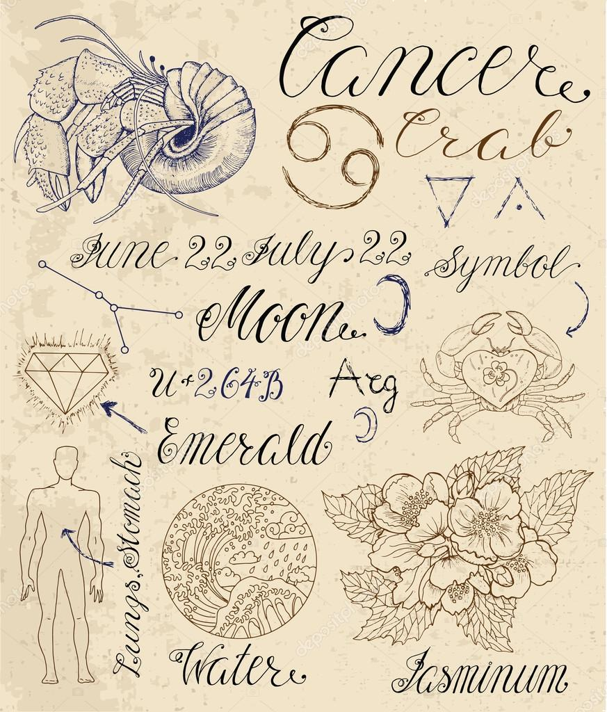 Symbols For Astrological Zodiac Sign Cancer Stock Vector