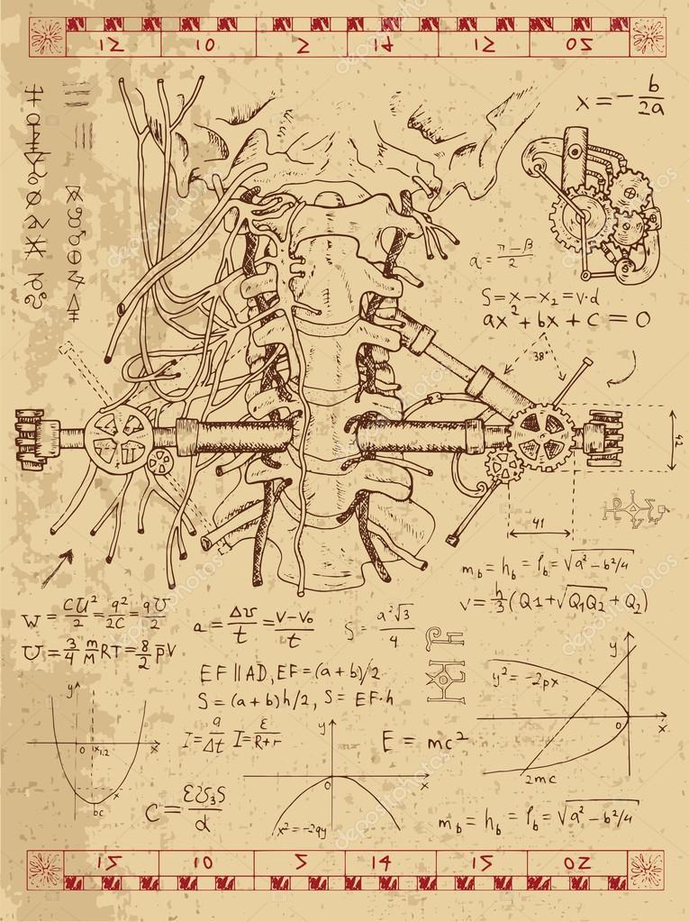 Conjunto de dibujos con gráficos, anatomía humana — Archivo Imágenes ...