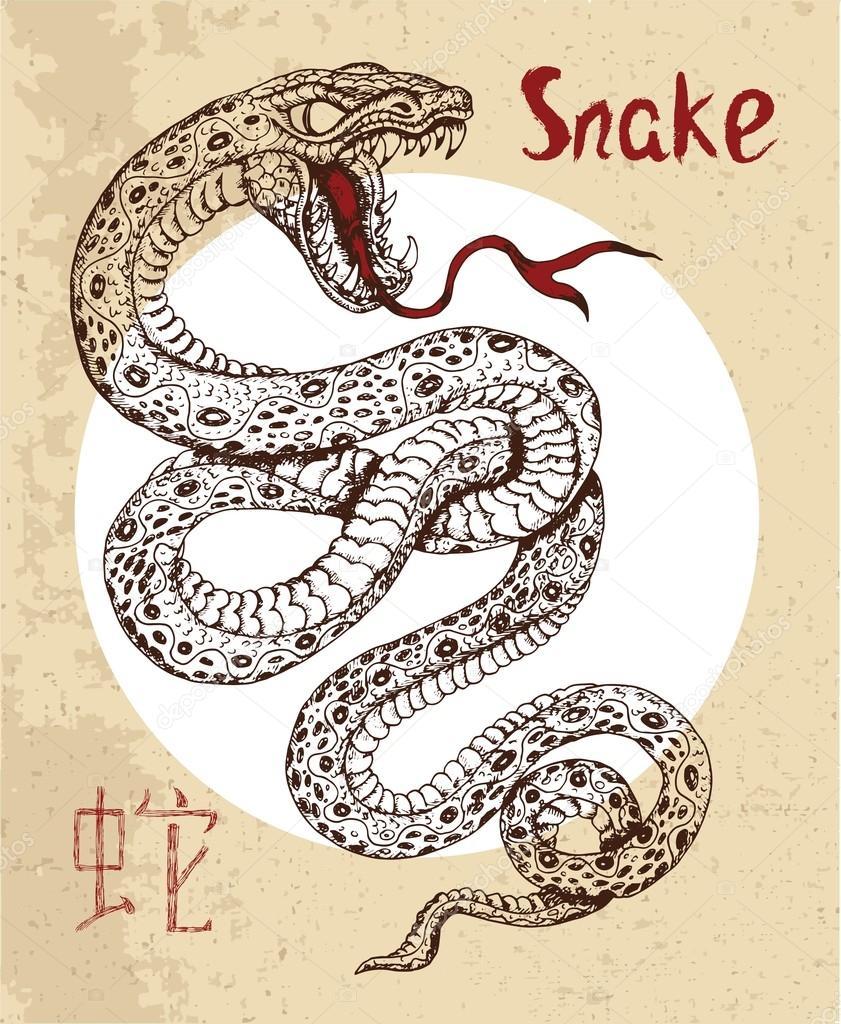 Именно поэтому в японии брошенное в адрес женщины слово «змея» не вызывает негативной реакции.