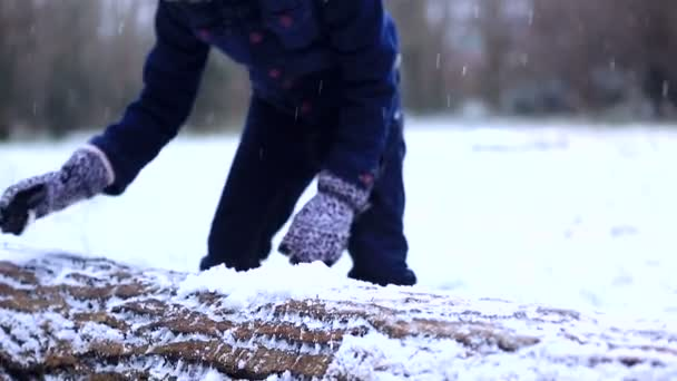 Girl collects the snow on a log