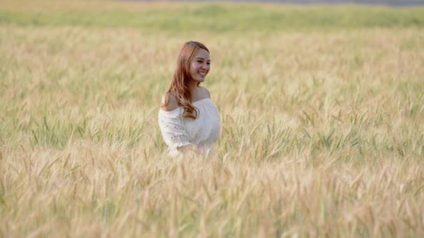 Šťastnou radost se svobodou ženy kráčející v ječmen spiknutí. Ruční dotýkání ječmene cereálie při západu slunce v zelené pšeničné luční louce. Dívka na jaře volná. Radostný den života v přírodě.
