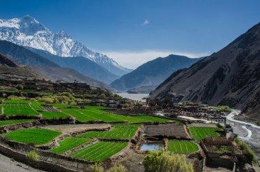 The village of Kagbeni, Upper Mustang, Nepal