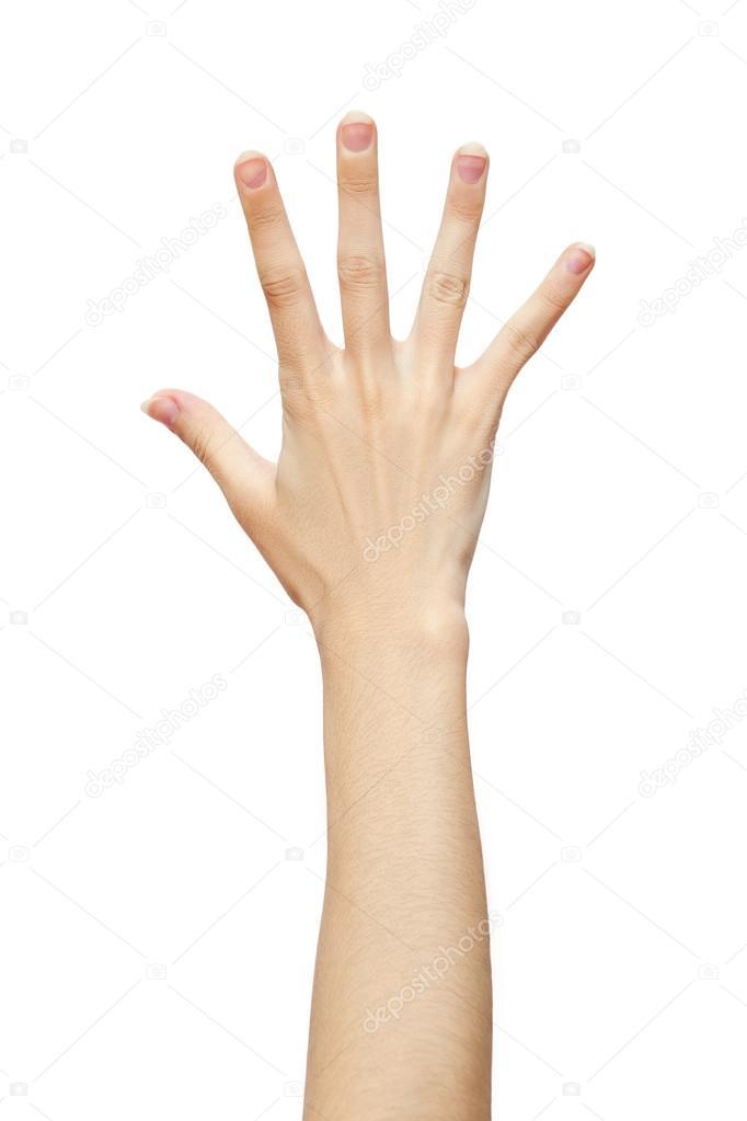 doigts de la main de l 39 homme 5 photographie versusstudio 61911325. Black Bedroom Furniture Sets. Home Design Ideas