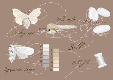 Silk cultivation brown seamless vector set