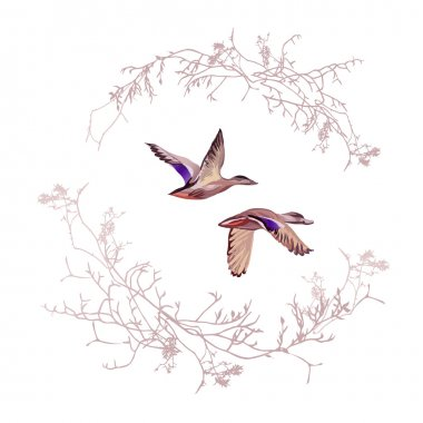 Duck hunting round vector design frame