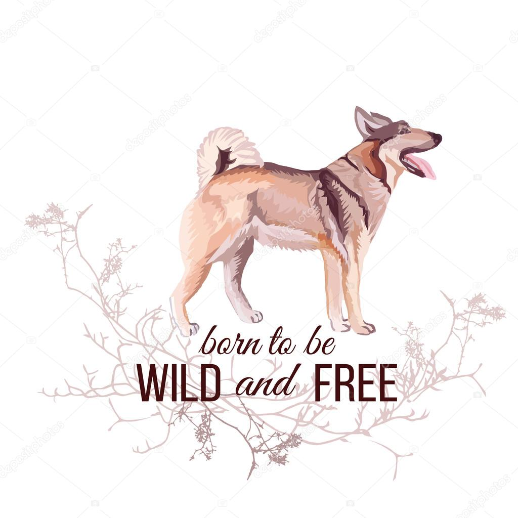 Hunting dog vector design object  Wild and Free slogan — Stock