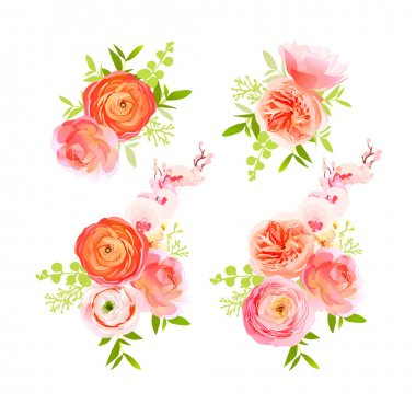 Peachy roses, ranunculus and  herbs bouquets vector design eleme