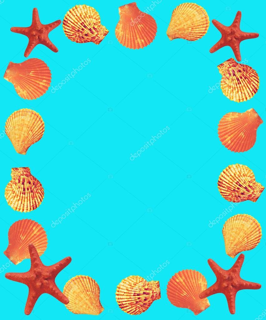 marco de conchas y estrellas de mar — Fotos de Stock © skef1964 ...