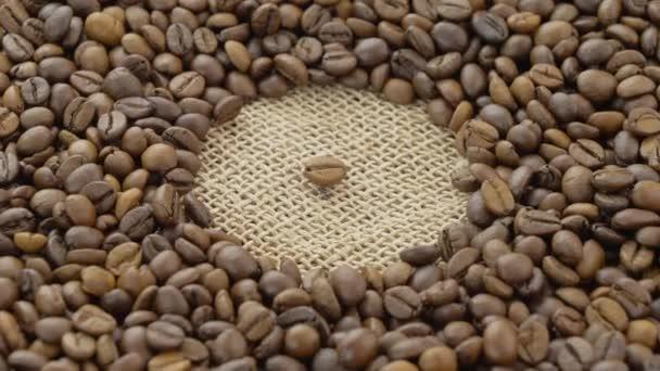 Kaffeebohnen. Geröstete Kaffeesamen