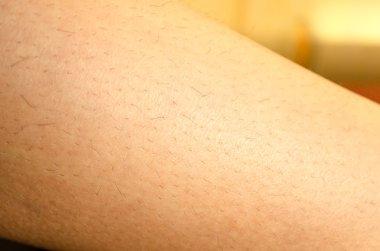One woman hairy leg
