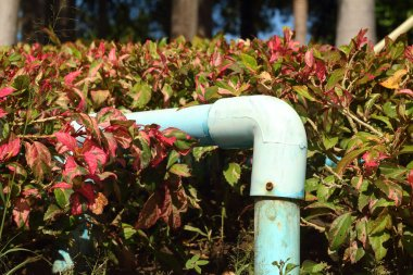A water pipes in a garden at the park