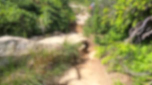 Blurred background. People walk on dirt mountain trail while hiking in mountains