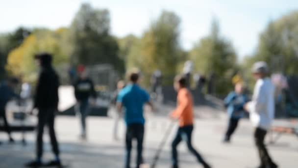 playground skate park
