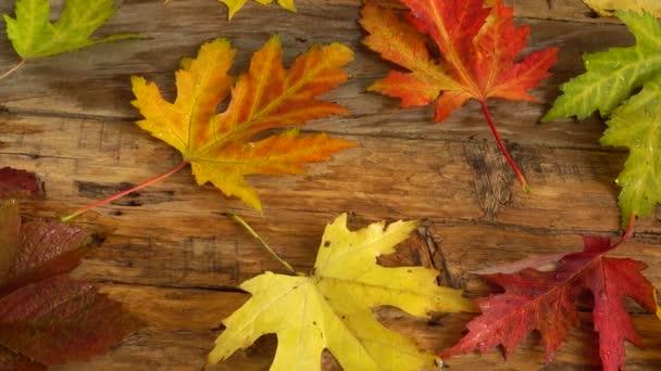 Podzimní listí na dřevěné vinobraní.