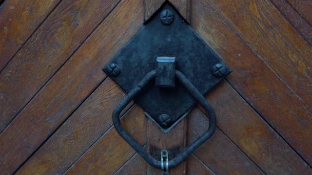 Old vintage wooden door. Vintage background close-up.
