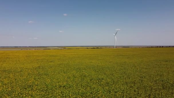 Aerial drone view of a flying over the wind turbine and agricultural fields. Sunflower field. Windmill. Wind farm.