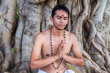 Brahmin Meditates Under Tree