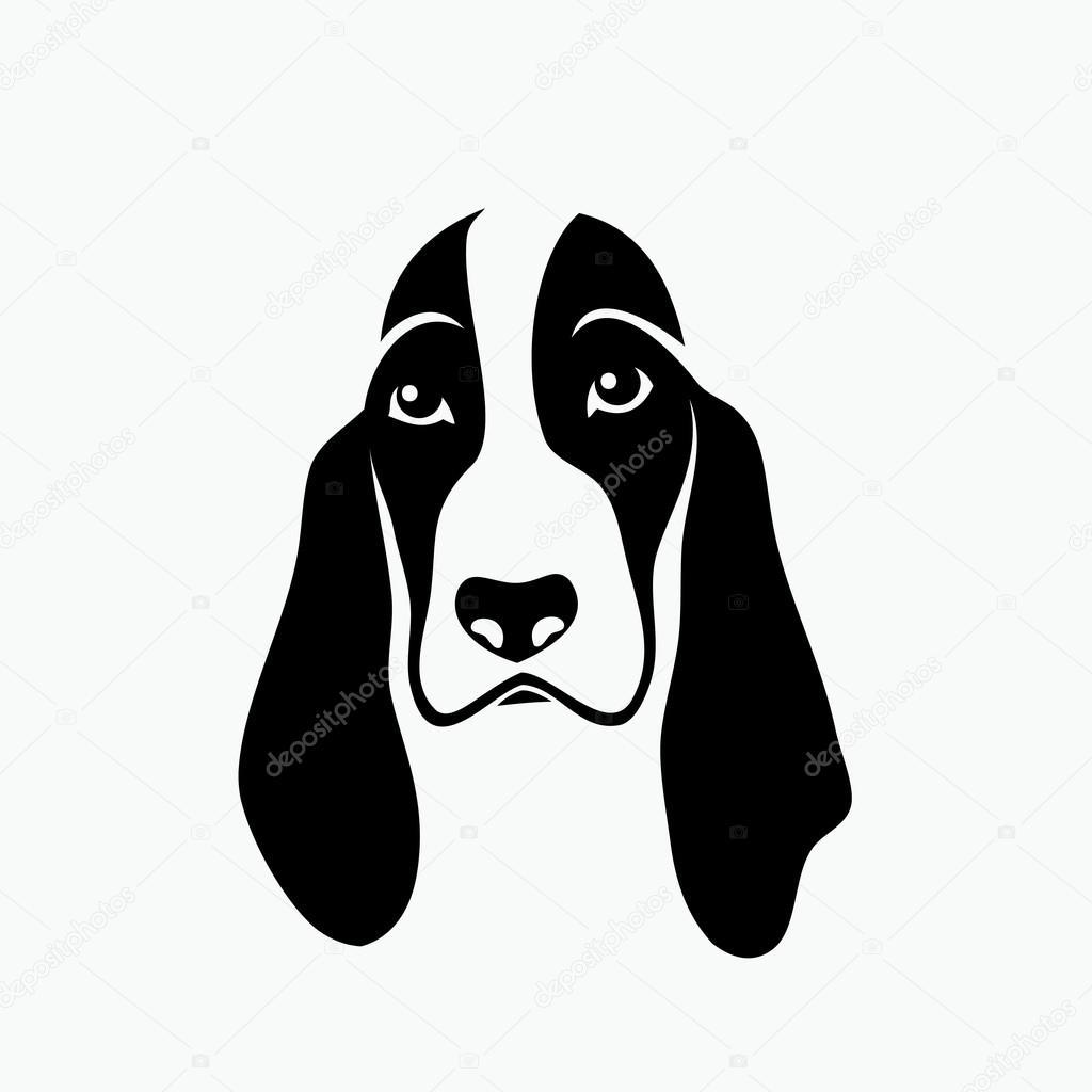 Vector Perro Basset Hound Perro Basset Hound Vector De Stock