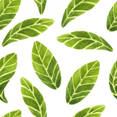 Fresh and beautiful vector seamless pattern with green leaves images on isolated background. All leaves are hand painted in watercolour. stock vector