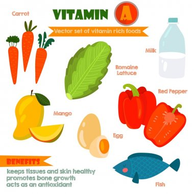 Vitamins and Minerals foods Illustrator set 2.Vector set of vita