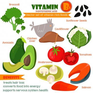 Vitamins and Minerals foods Illustrator set 9.Vector set of vita