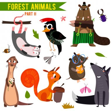 Cute Woodland and Forest Animals