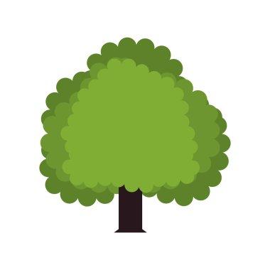 green Tree icon. Nature design. Vector graphic