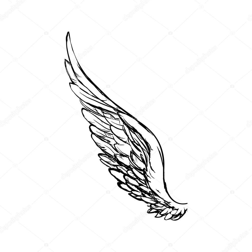 icono de Ángel ala pluma animal Ave. Gráfico vectorial — Vector de ...