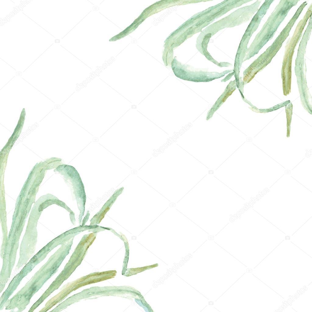 Eco Cadre Herbe Dcorations Et Salutations Cartes De Visite Image Vectorielle
