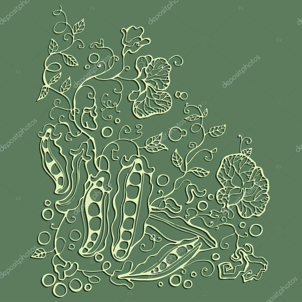 Green pea sketch