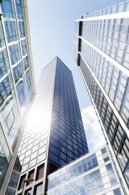 Skyscrapers in a low angle view