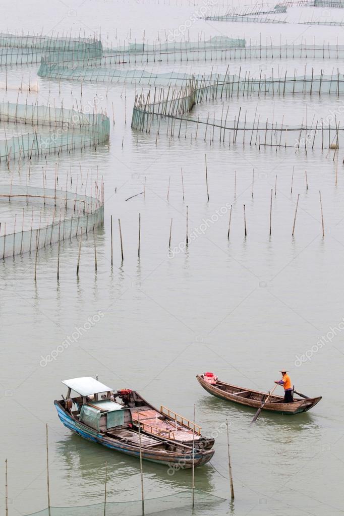 Crab farming in Xiapu County, China
