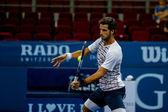 Malajské otevřené tenisové 2015