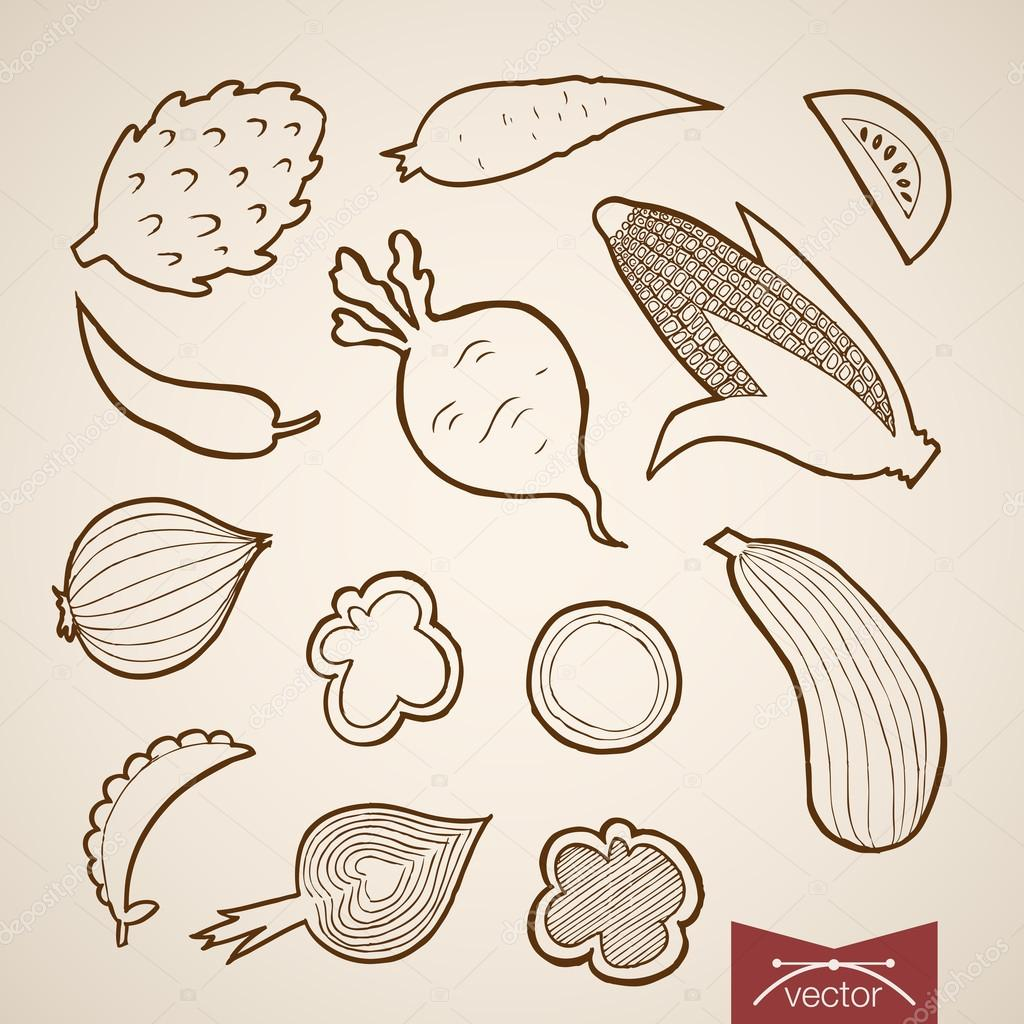 Pencil sketch of vegetables collection stock vector