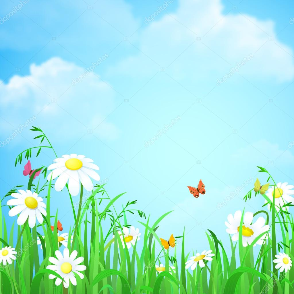 Nice shiny daisy flowers and butterflies