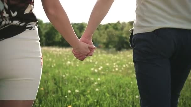 Paar in einem Feld mit Löwenzahn im Sommer Park zu Fuß und Hand in Hand bei Sonnenuntergang