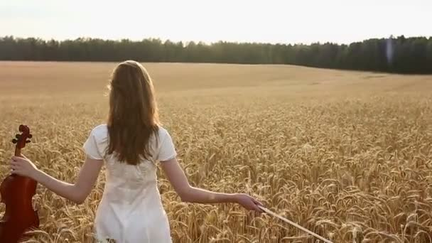 Violinist girl walking through a wheat field. Slow motion