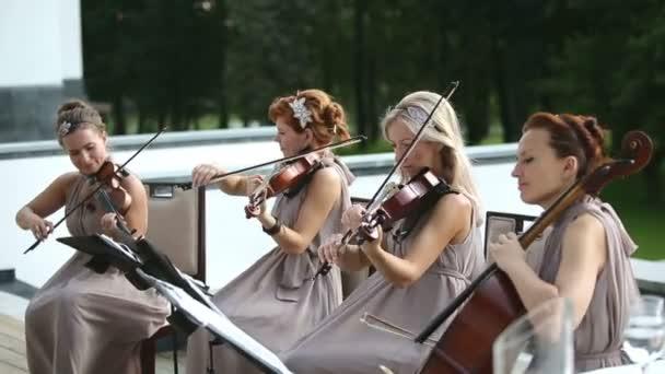 Hudební kvarteto. Tři houslisté a violoncellista přehrávání hudby. Session klíčové slovo: uzhursky003