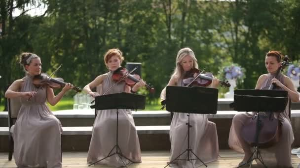 Musical quartet. Three violinists and cellist playing music.  SESSION KEYWORD: uzhursky003
