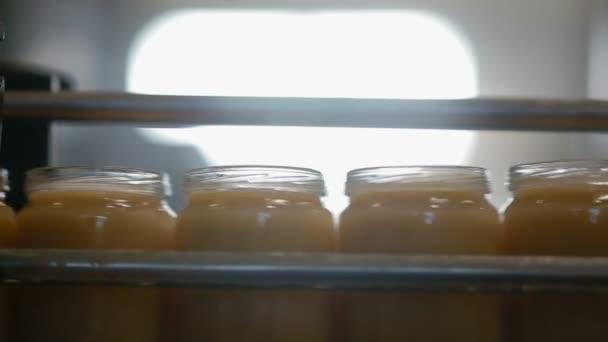 Üvegek széles szállítószalag mozog a gyárban. Videó és hang