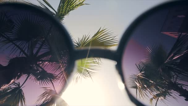 Sun and palm trees through sunglasses