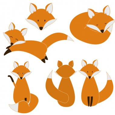 Cute fox set isolated on white background stock vector