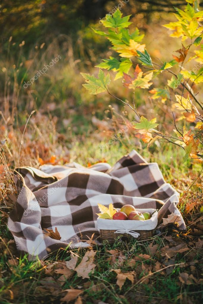 Young woman wearing knitted poncho having picnic in a forest: drinking tea and picking apples