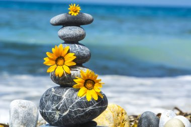 zen stones and yellow flowers