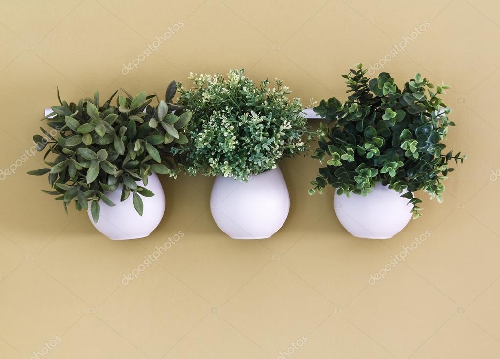 Trzy Białe Doniczka Z Kwiatami Wiszące Na ścianie Zdjęcie