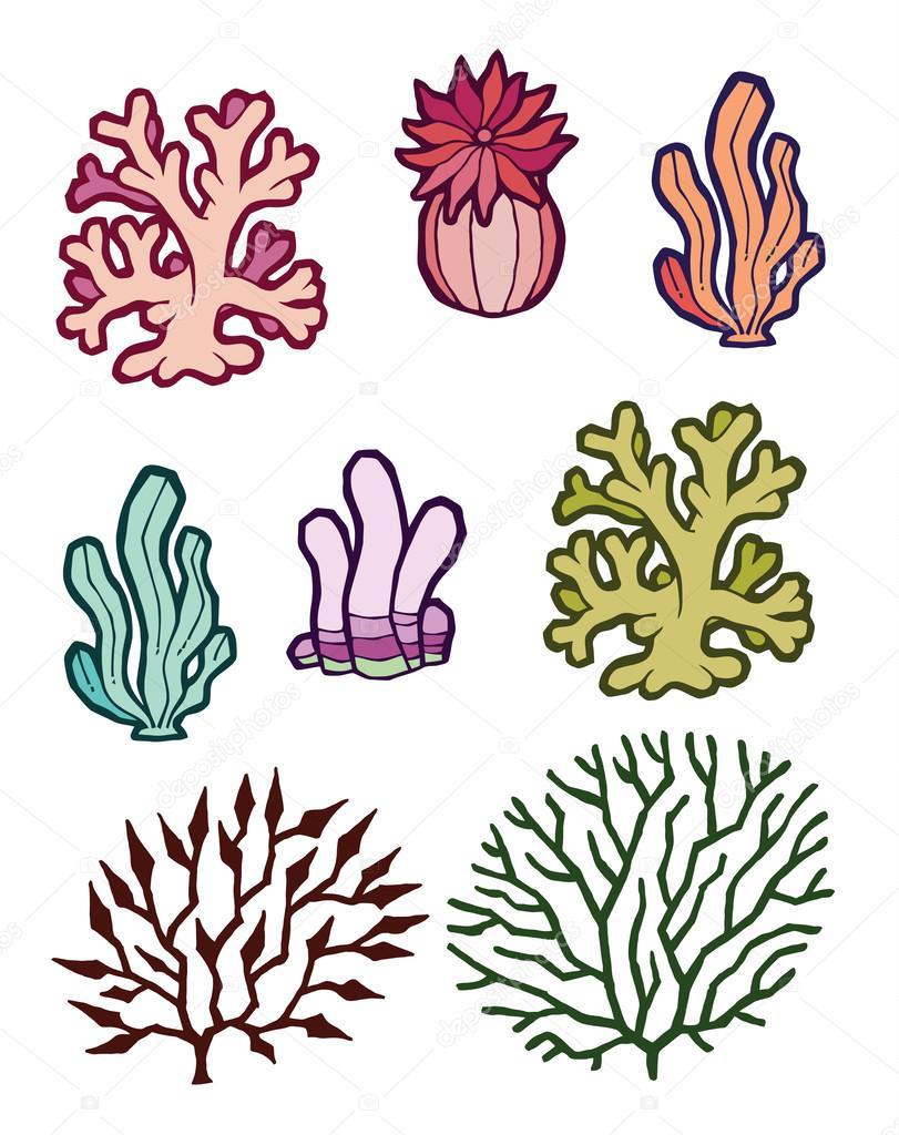 vector set of subsea plants algae corals sea anemones