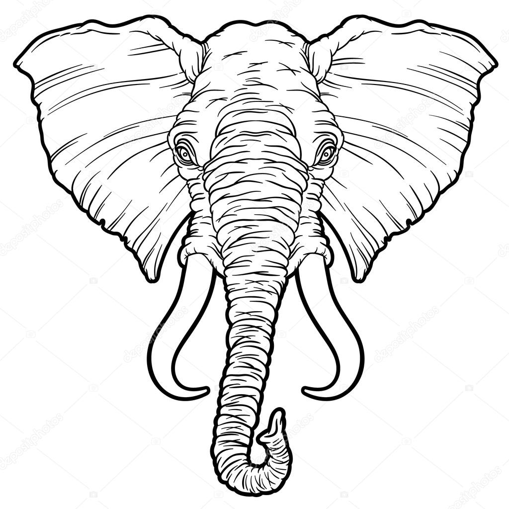 cartoon african elephant head stock vector. Black Bedroom Furniture Sets. Home Design Ideas