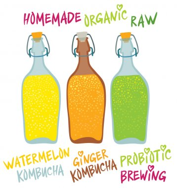 Kombucha in different glass  bottles