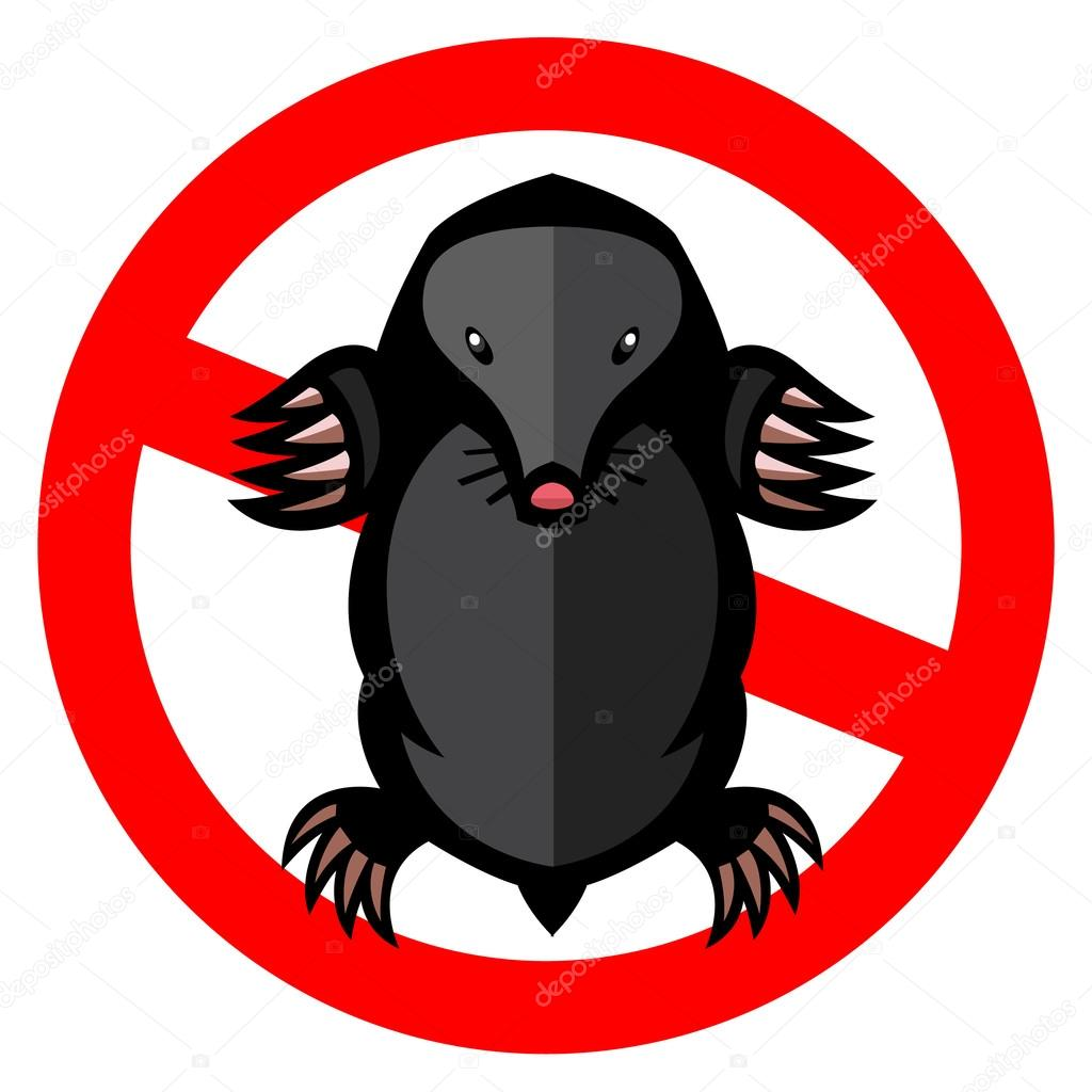 mole pest animal illustration